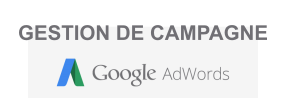 Gestion de Campagne Adwords